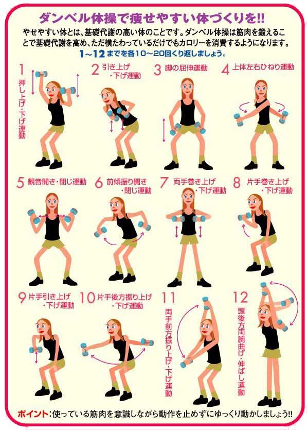 ダンベル体操 ◆いつでもどこでも、気軽にダンベル体操! ダンベル体操は、体への負担が少ない12種